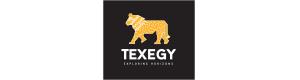 Texegy