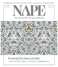 NAPE Magazine - January 2020